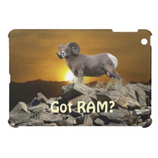 Rocky Mountain Wild Big Horn Sheep Sunset iPad Mini Cover