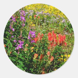 Rocky Mountain Wildflowers Classic Round Sticker