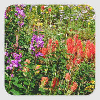 Rocky Mountain Wildflowers Square Sticker