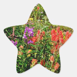 Rocky Mountain Wildflowers Star Sticker