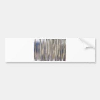 Rocky Mountain Winter Aspent Tree Forest Dream Bumper Stickers