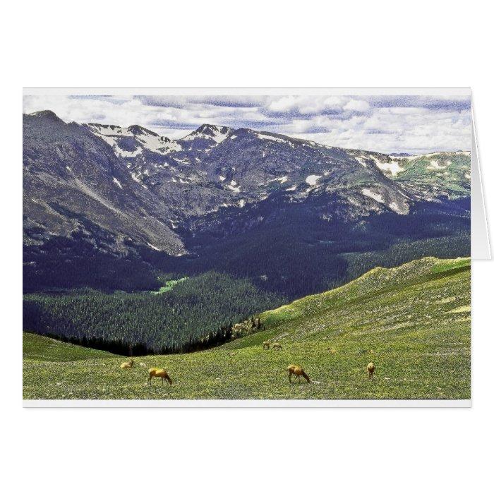 Rocky Mtn NP CO Card