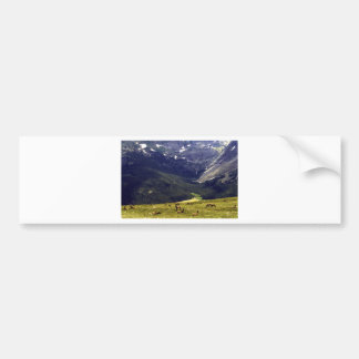 Rocky Mtn NP with Elk.jpg Bumper Sticker