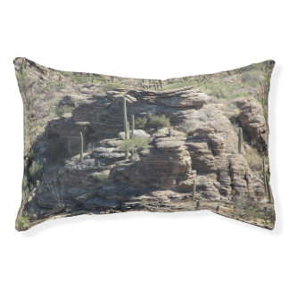 Rocky Outcropping in Tucson Pet Bed