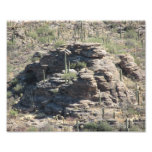 Rocky Outcropping in Tucson Photographic Print