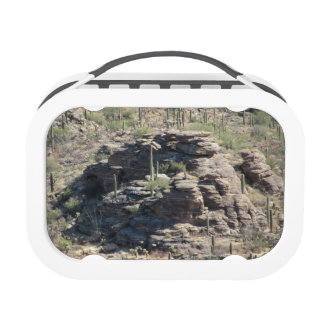 Rocky Outcropping in Tucson Yubo Lunchboxes