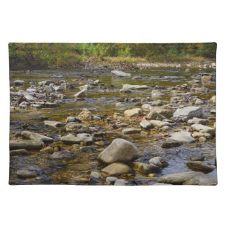 Rocky Path Cloth Placemat
