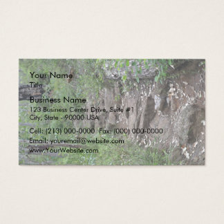 Rocky pathway in forest business card