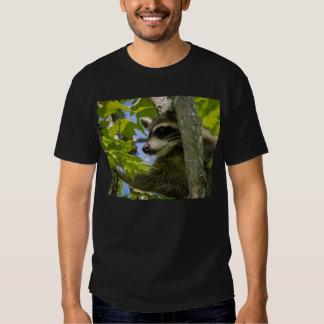Rocky Raccoon Tshirt