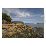 Rocky Seaside With Motorboat Traveling Greeting Card