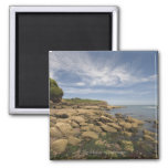 Rocky Seaside With Motorboat Traveling Fridge Magnet