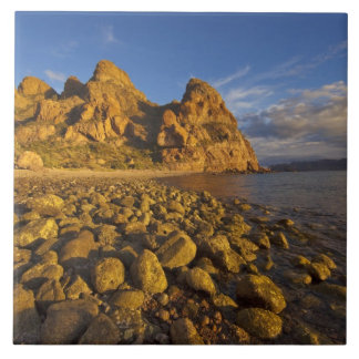 Rocky shoreline on Isla Carmen in the Gulf of Ceramic Tile