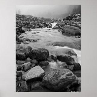 Rocky Stream - Mount Rainier National Park Poster