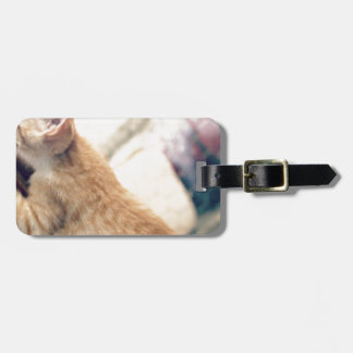 Rocky Tag For Luggage