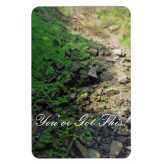 Rocky Trail Through the Woods Magnet