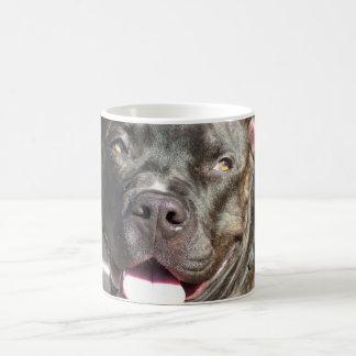Rocky's Mug