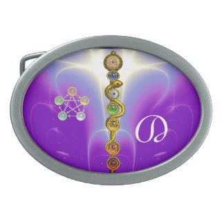 ROD OF ASCLEPIUS 7 CHAKRAS,YOGA ,SPIRITUAL ENERGY BELT BUCKLE