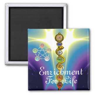 ROD OF ASCLEPIUS 7 CHAKRAS,YOGA ,SPIRITUAL ENERGY MAGNET