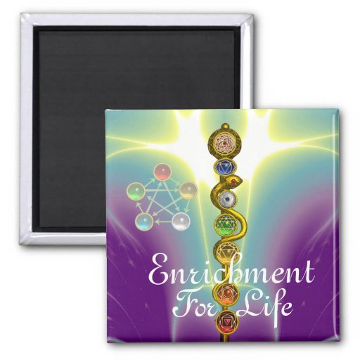 ROD OF ASCLEPIUS WITH 7 CHAKRAS ,SPIRITUAL ENERGY 2 INCH SQUARE MAGNET