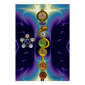 ROD OF ASCLEPIUS WITH 7 CHAKRAS SPIRITUAL ENERGY POSTER