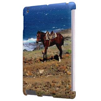 rode on the beach, saddled horse