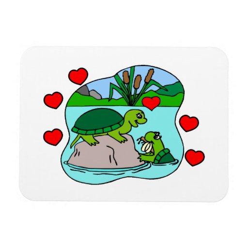 Rodeado por amor de la tortuga iman rectangular