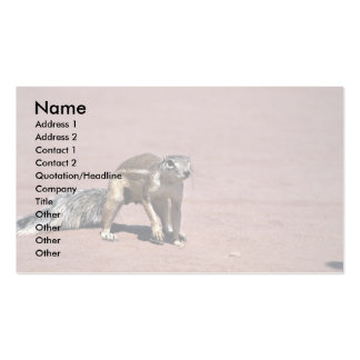 Rodent Business Card