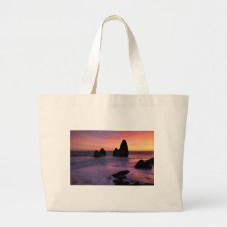 Rodeo Beach Bag