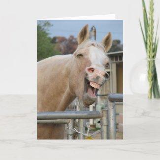 Rodeo Bob Horse Birthday Card card