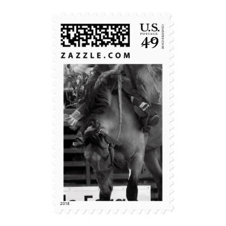 Rodeo Bronco Postage Stamps