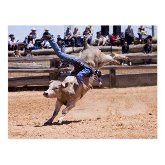 Rodeo Bucking Bull Tarjetas Postales