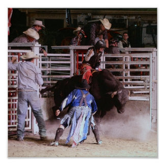 RODEO: BULL RIDING POSTER