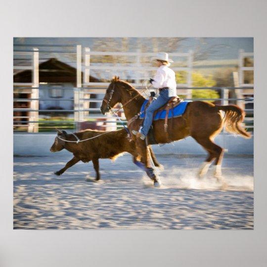 Rodeo cowboy calf roping poster