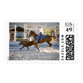 Rodeo cowboy calf roping stamp