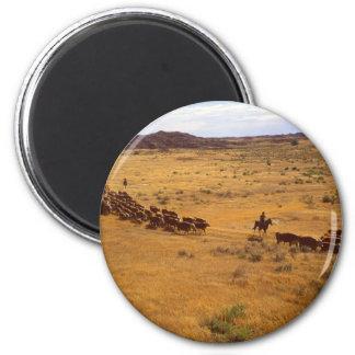 Rodeo del ganado imán redondo 5 cm