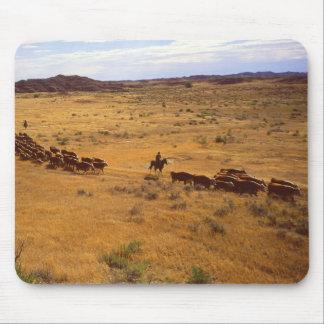 Rodeo del ganado mousepads