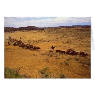 Rodeo del ganado tarjeta de felicitación