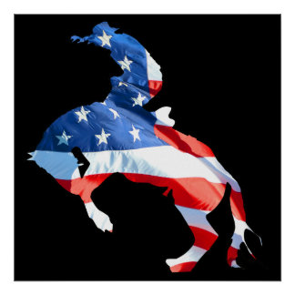 Rodeo is America - Bronco Riding Poster
