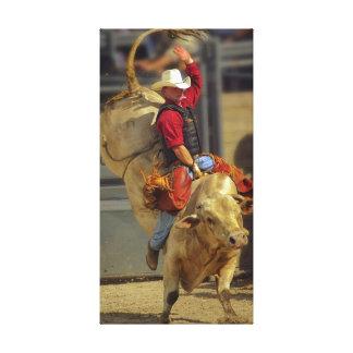 Rodeo - montar a caballo de Bull - PBR - Ryder roj Impresión En Lona