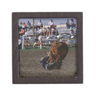 Rodeo rider falling from bull premium keepsake boxes