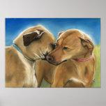 Rodesian Rigeback Dog Art Print