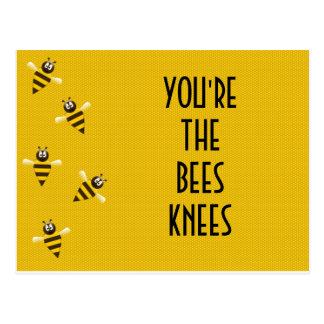 rodillas de las abejas tarjetas postales