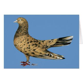 Rodillo oriental que vuela:  Almendra Felicitación