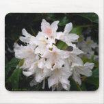 Rododendro blanco Mousepad Alfombrillas De Raton