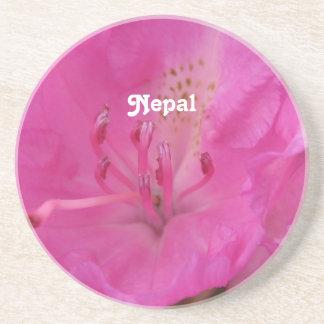 Rododendro de Nepal Posavaso Para Bebida