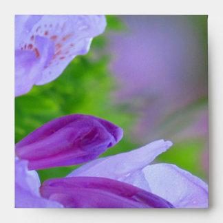 """Rododendro después de la lluvia 5 el 1/2 """" x5 el 1"""