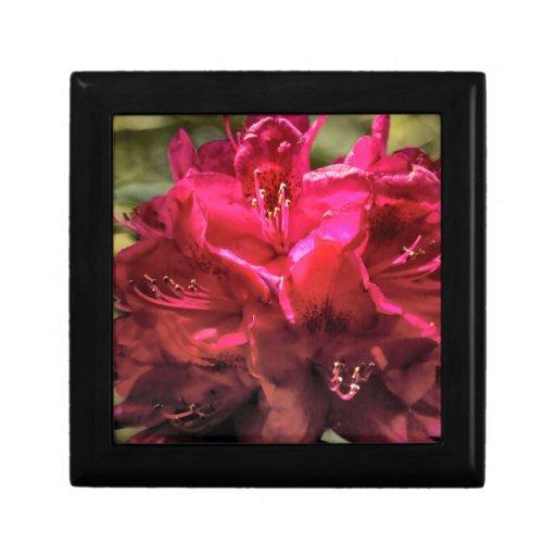 Rododendro Joyero Cuadrado Pequeño