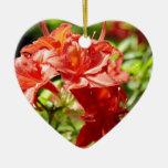 Rododendro Ornamentos De Reyes