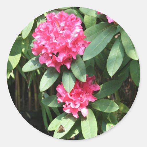 Rododendro Pegatina Redonda