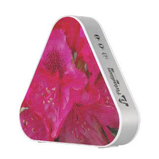 Rododendro rosado altavoz